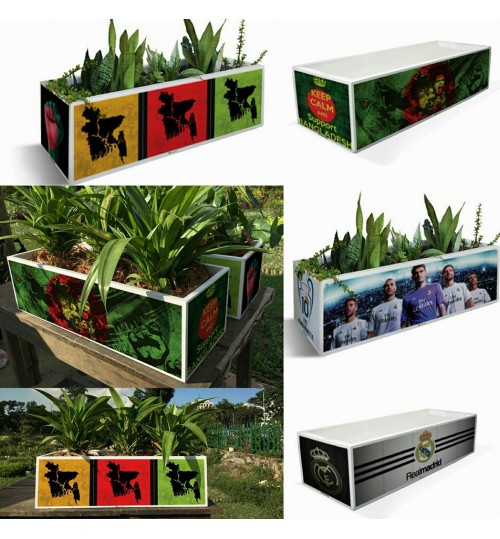 Special Indoor Plants With PVC Waterproof Theme BOX